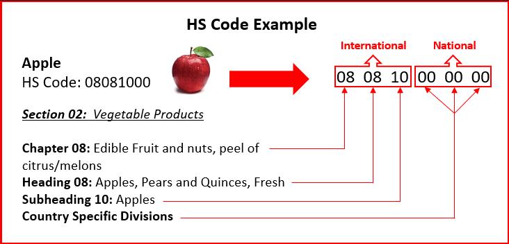 Cấu trúc hoàn chỉnh HS Code